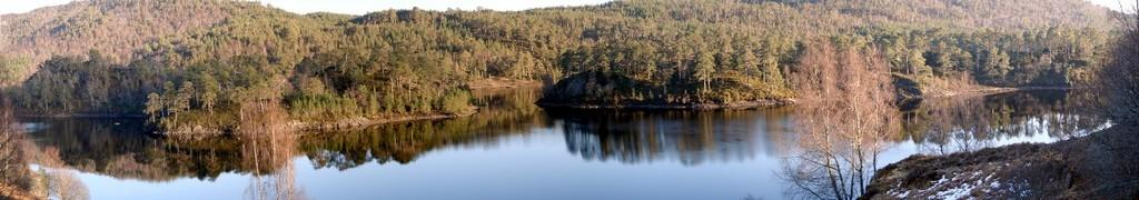Ecosse 2007 - Panoramique - Glen Affric